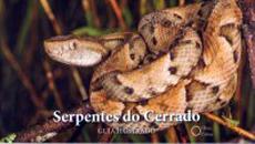 Guia ilustrado reúne serpentes do cerrado brasileiro