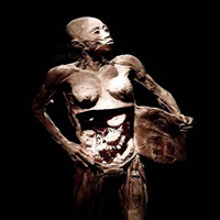 corpohumano