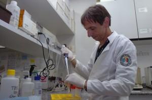 Os pesquisador do ICB Cristoforo Scavone defende o trabalho preventivo como a melhor forma de lidar com as doenças degenerativas que atingem os idosos. Foto: Francismo Emolo