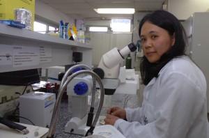 Elisa Kawamoto conta que um dos atuais desafios da ciência é descobrir o que há de diferente no cérebro de uma pessoa que envelhece sadiamente e de outra que desenvolve uma doença degenerativa. Foto: Francisco Emolo