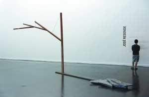 Das 12 obras expostas, 8 são inéditas. As outras 4 já haviam sido exibidas no MAM (Museu de Arte Moderna) do Rio de Janeiro