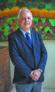 Brandão presidiu o Comitê Executivo do Conselho Internacional de Museus (Icom) entre 2006 e 2010, permanecendo como integrante até 2013