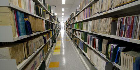 IGc – Biblioteca