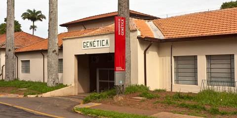 ESALQ – Departamento de Genética