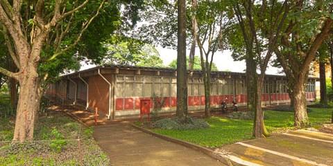 ESALQ – Departamento de Entomologia e Acarologia