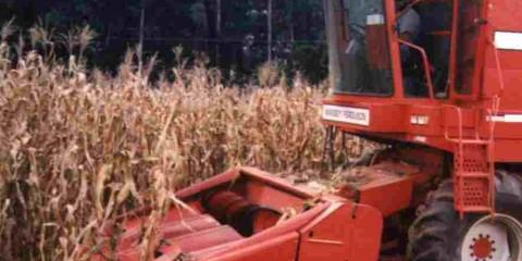 ESALQ – Departamento de Engenharia de Biossistemas Mecânica e Máquinas Agrícolas