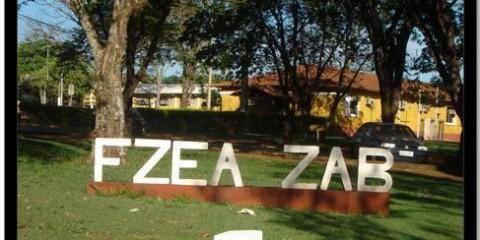 FZEA – Departamento de Ciências Básica